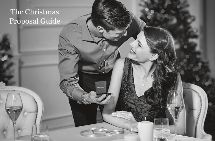The Christmas Proposal Guide
