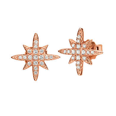 Folli Follie Earrings